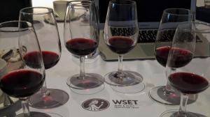 WSET 2  Vin